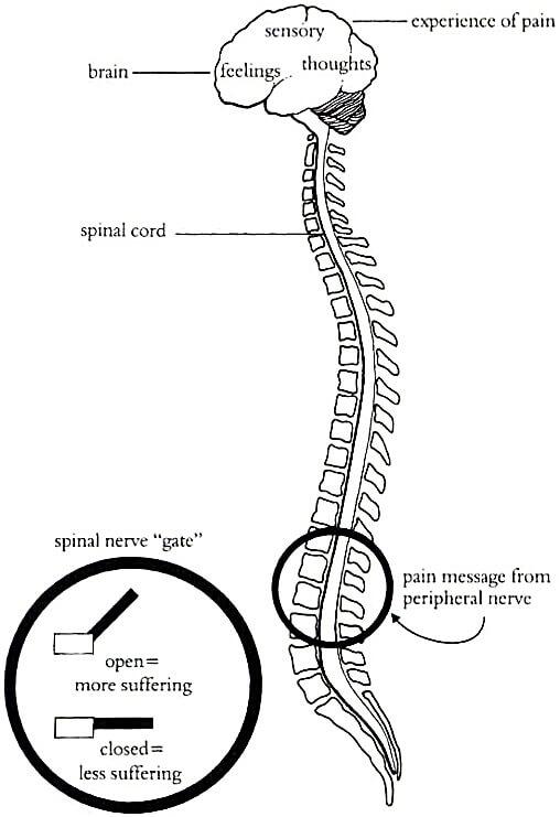 TENS smärtbehandling